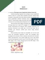 Tes Laboratorium dalam Mendiagnosis Anemia Megaloblastik Defisiensi Vitamin B12.pdf