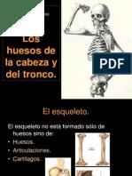 2 Los Huesos de La Cabeza y El Tronco