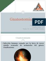 Gnatostomiasis.pptx