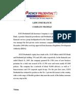 8 - Icici Predential - Company Profile