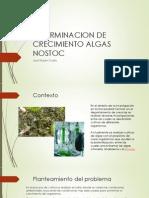 Determinacion de Crecimiento de Algas Nostoc Presentacion