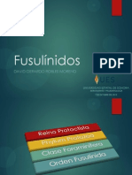 EYP_ROBLES MORENO_FUSULÍNIDOS