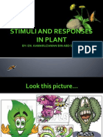 STIMULI AND RESPONSES IN PLANT.ppsx