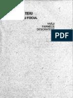 Jocul cu focul.PDF