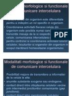 Membrana celulara.pdf