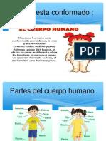 aprendiendo cómo está formado el Cuerpo Humano