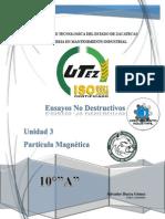 Unidad 3 Particula Magnetica