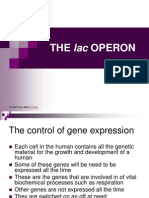 08_lac_OPERON.ppt