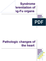 Syndrome Differentiation of Zang-Fu Organs