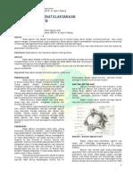 DIAGNOSIS DAN PENATALAKSANAAN ABSES SEPTUM NASI.pdf