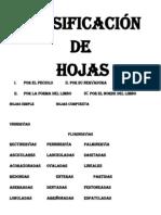 CLASIFICACIÓN DE
