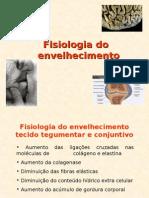 Fisiologia Do Envelhecimento