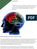 A 10 leghíresebb pszichokísérlet