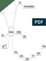 Naturaleza Mapa Conceptual