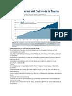 DIAGNOSTICO DE LA SITUACIÓN ACTUAL11111111111111111