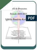 Perfil Del Proyecto 2010-2015[1] (1)