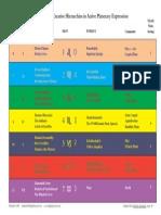 7 Creative Hierarchies.pdf