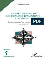 Le Breuvage Sacre Des Chamans d Amazonie - LAyahuasca