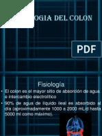 Fisio de Colon