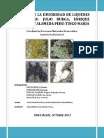 Liquenes-como-indicadores-de-contaminacion-atmosférica
