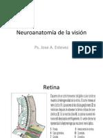 neuroanatomía de la visión clase # 7