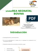 Diarrea Neonatal Bovina Grpo2 2013 b