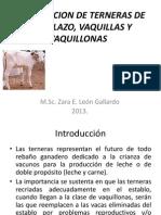 Aliment de Terneras de Reemp, Vaquillas y Vaq 2013
