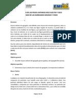 determinacindelospesosunitariossecosueltosysecocompactadodelosagregadosgruesosyfinos-121009003714-phpapp01