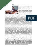 PRINCIPIOS PARA LA ORIENTACIÓN EDUCATIVA