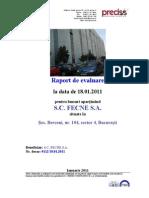 raport_ex.pdf