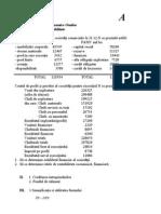 subiecte2010.doc