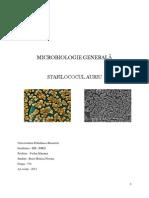 Proiect Microbiologie generala