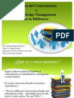 Sylmari Burgos Knowledge Management