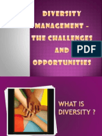 managing-diversity-the-challenge-for-indian-inc-1225806401736749-9.ppt