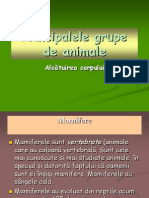 0_prezentare_grupele_de_animale.ppt