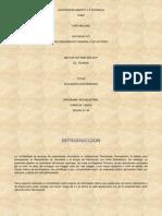 Act N°2 Tarea Nestor Zea Grupo N°50.docx