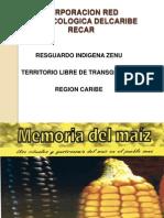 Diapositivas Memoria Del Maiz
