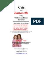 Bartonella pisica
