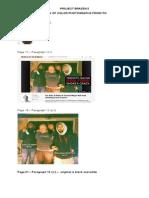 Rob Ford investigation