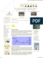 Portal de Centros Naturales - Neurotransmisores.pdf