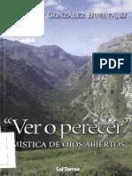 GONZÁLEZ BUELTA, Benjamín, Ver o perecer. Mística de ojos abiertos - EPUB para libro electrónico- Sal Terrae, 2006