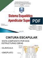 diapositivas iutepal.pptx