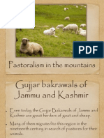 Pastoralism in mountains.ppt