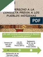 PPT El Derecho a La Consulta Previa