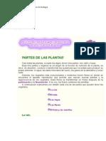 Partes de Laplanta