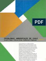 Problemas Ambientales de Chile 1990 1