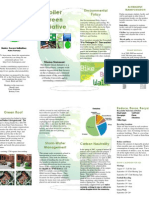 Team Green, Black and Gold Client Project Brochure