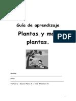 Guia 4 Ciencias Las Plantas
