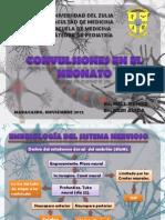 Convulsion Neonatal Definitiva..