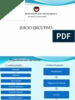 Juicio Ejecutivo- Final by Derick Sanchez